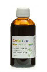 Dědek kořenář GAMBIT–H200 ml
