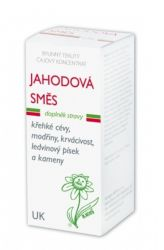 Dědek kořenář Strawberry Mixture UK 100 ml