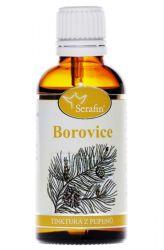 Serafin Pine ─ Tincture of buds 50 ml