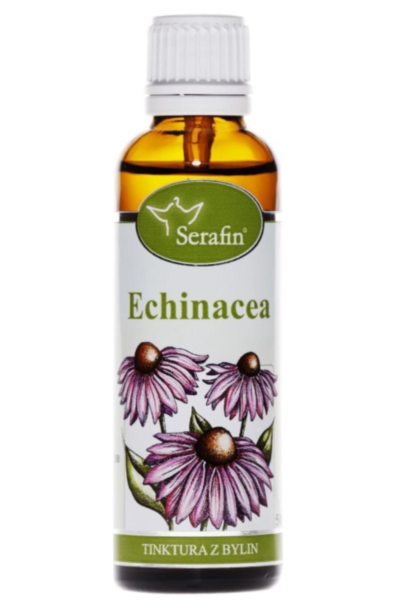 Serafin Echinacea - tincture of herbs 50 ml