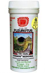 Cosmos Pleurotus 15 g – 60 capsules