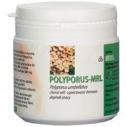 MRL Polyporus umbellatus 250 g