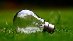 Jak začít žít ekoLOGICKY? Malé kroky pro velký svět!