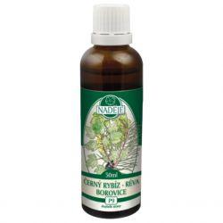 Naděje Blackcurrant-pine-vine 50 ml