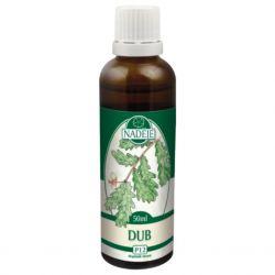 Naděje Summer oak - bud tincture 50 ml